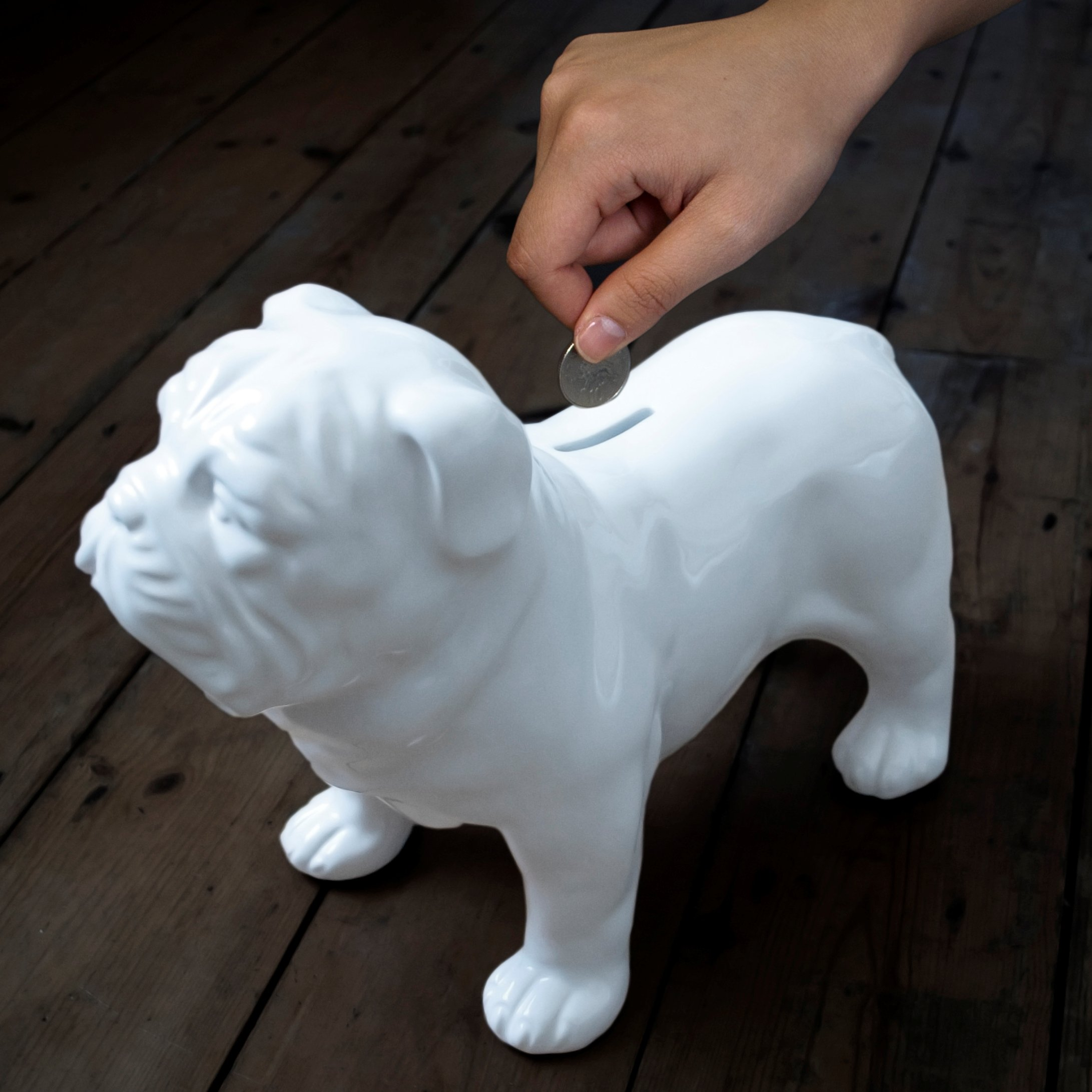 SUCK UK Ceramic Guard Dog Money Box by Suck UK (Image #4)