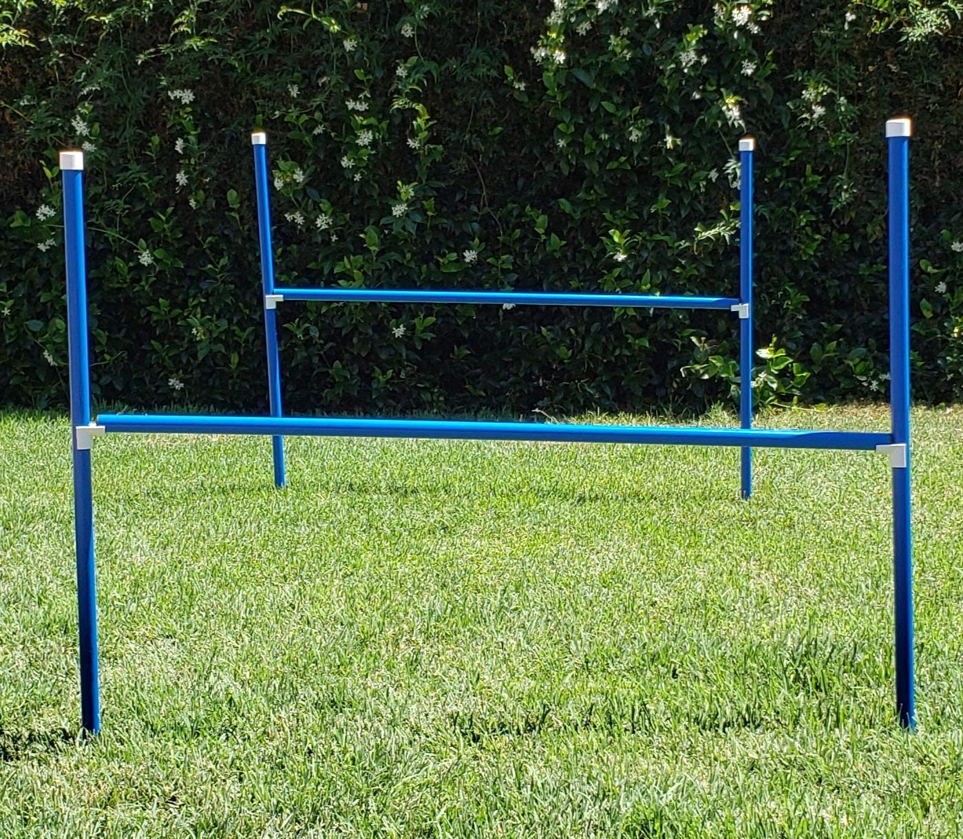 Triple A Dogs 2 Jump Set Dog Agility Jumps//Hurdle