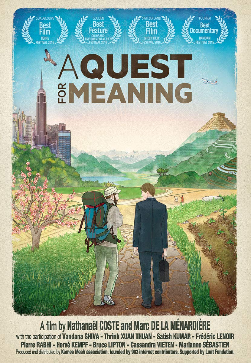 DVD : A Quest For Meaning (DVD)