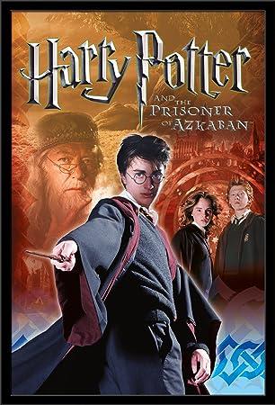 Amazon.com: Trends International Harry Potter 3 equipo 3 ...