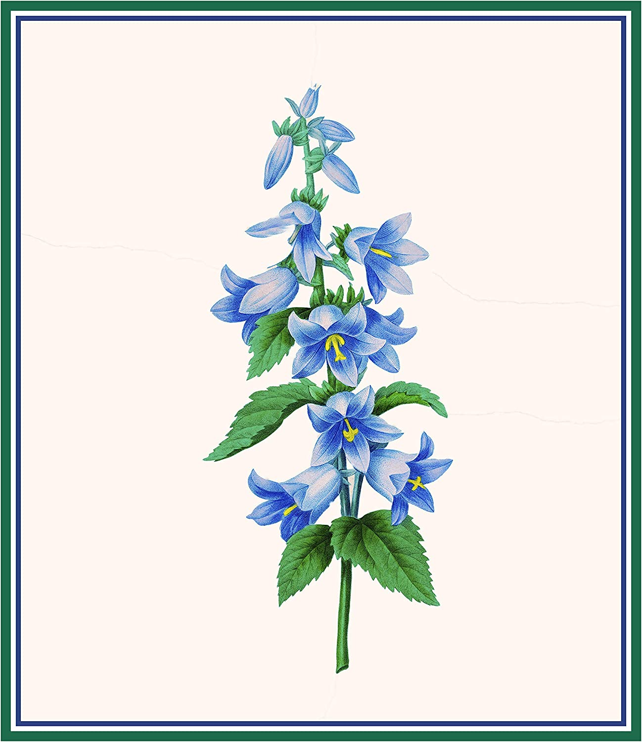Orenco Originals Redoutes Blue Bell Flower Botanical Counted Cross Stitch Pattern