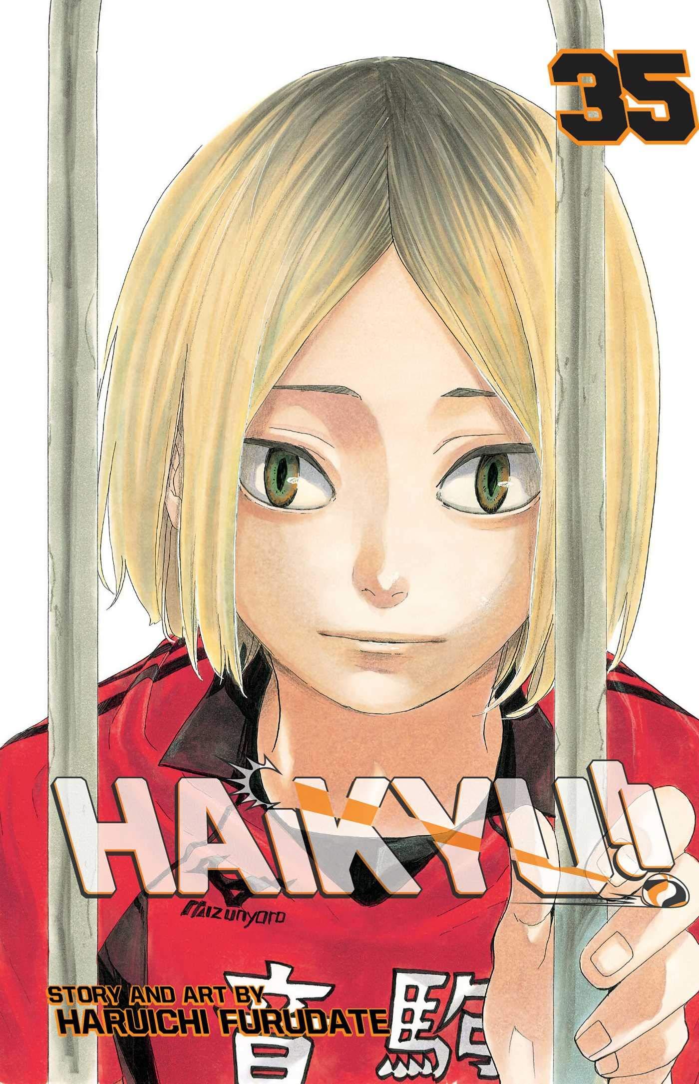 Haikyu!! - Tomo 35 - Haruichi Furudate - Manga ( Ingles)