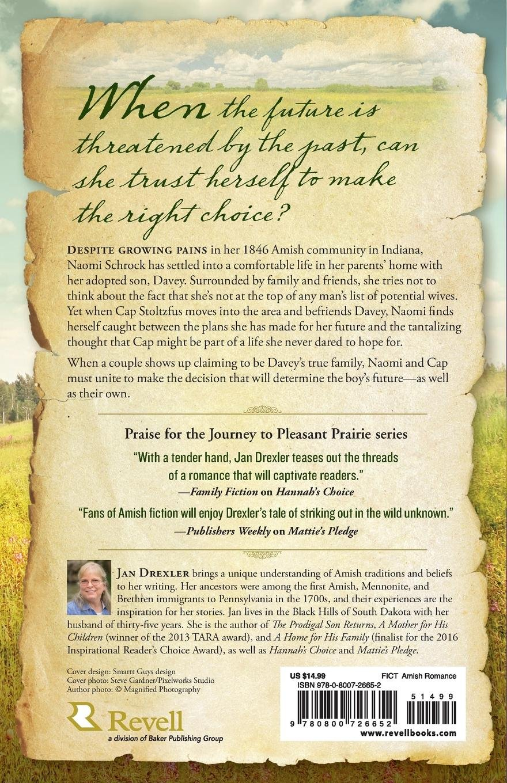 Naomi's Hope (Journey to Pleasant Prairie): Jan Drexler: 9780800726652:  Amazon.com: Books