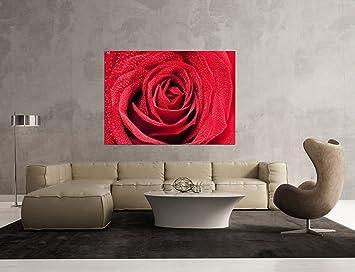 Glasbild Motiv Rote Rosen Wohnzimmer Modern querformat ...