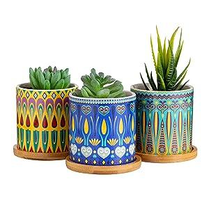 Dsben Succulent Plant Pots