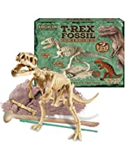 T-Rex Fossil Digging and Modelling Set (2 in 1)