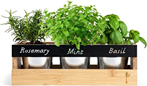 """Farmhouse Kitchen Window Planter Box - Succulent, Flower & Herb Garden - Indoor & Outdoor - Includes Bamboo Wood Rectangle Planter Box, 3 Small Plant Pots, Drainage Tray & Chalk - 14"""" x 5.3"""" x 4.5"""""""
