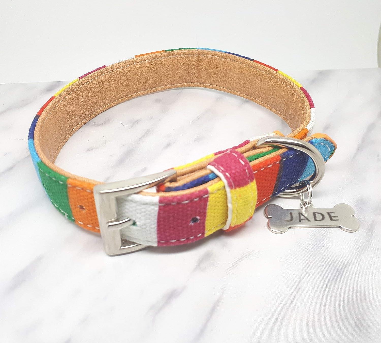 COLLAR NOMBRE MASCOTA, collar de perro con el nombre de la mascota.