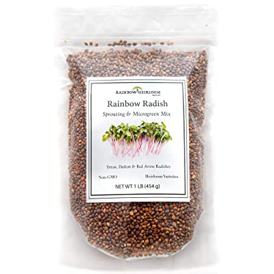 Rainbow Radish Sprouting Seeds Mix | Heirloom Non-GMO Seeds for Sprouting & Microgreens | Contains Red Arrow, Purple Triton & White Daikon Radish Seeds 1 lb Resealable Bag | Rainbow Heirloom Seed Co. : Garden & Outdoor