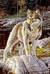 Toland Home Garden 109708 Courage Wolf 28 x 40 Inch Decorative, House Flag-28