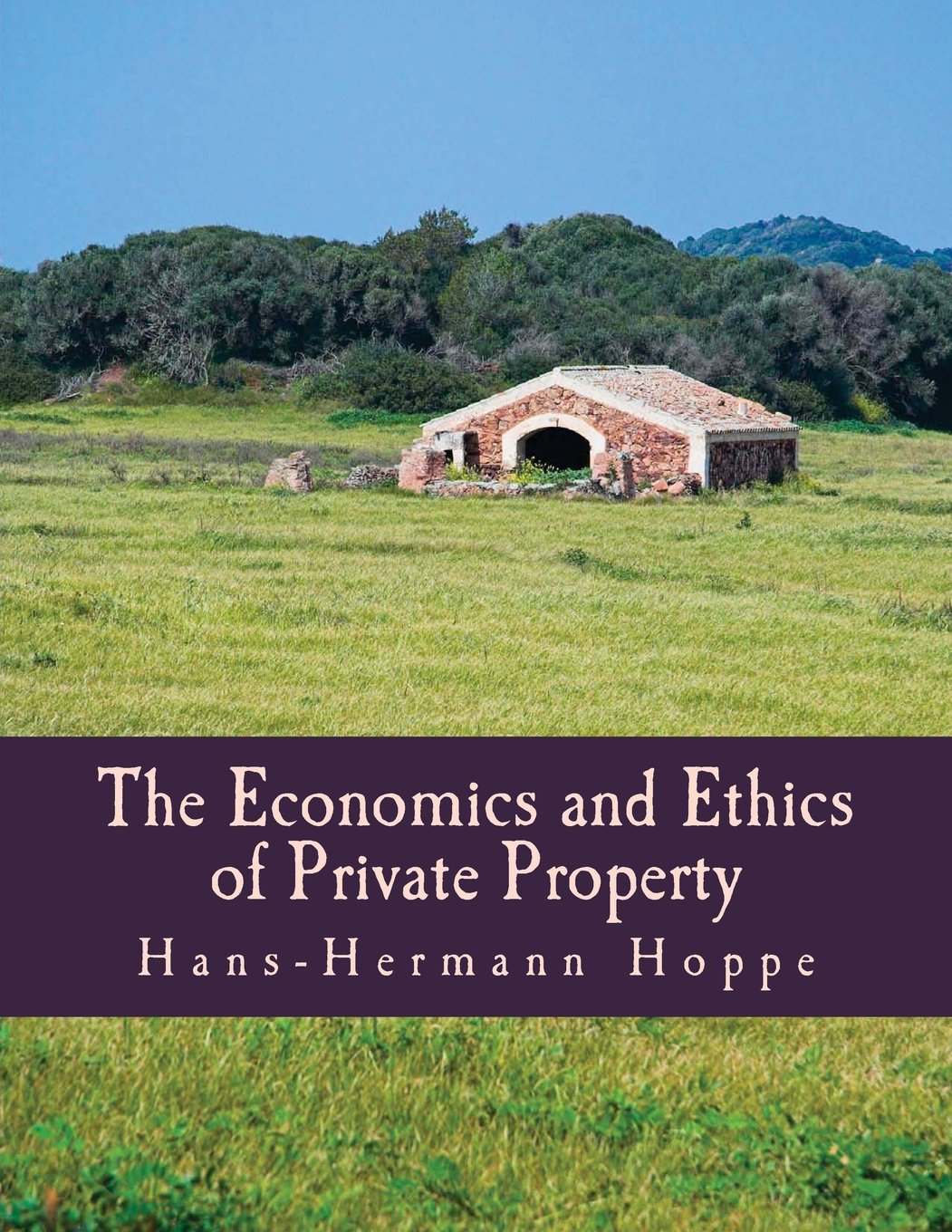 The Economics and Ethics of Private Property (Large Print Edition) ePub fb2 ebook