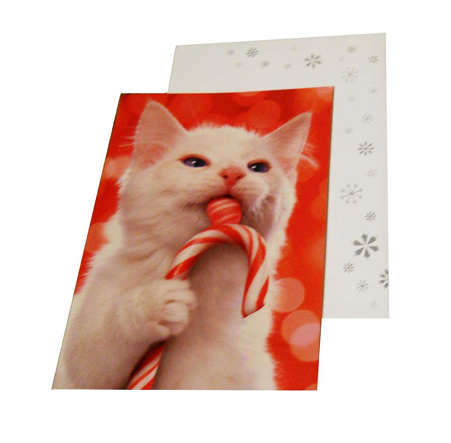 Avanti Christmas Cards Boxed | www.topsimages.com