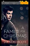 A Family for Christmas (English Edition)