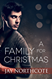 A Family for Christmas (English Edition)