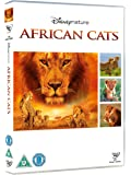 African Cats [Import anglais]