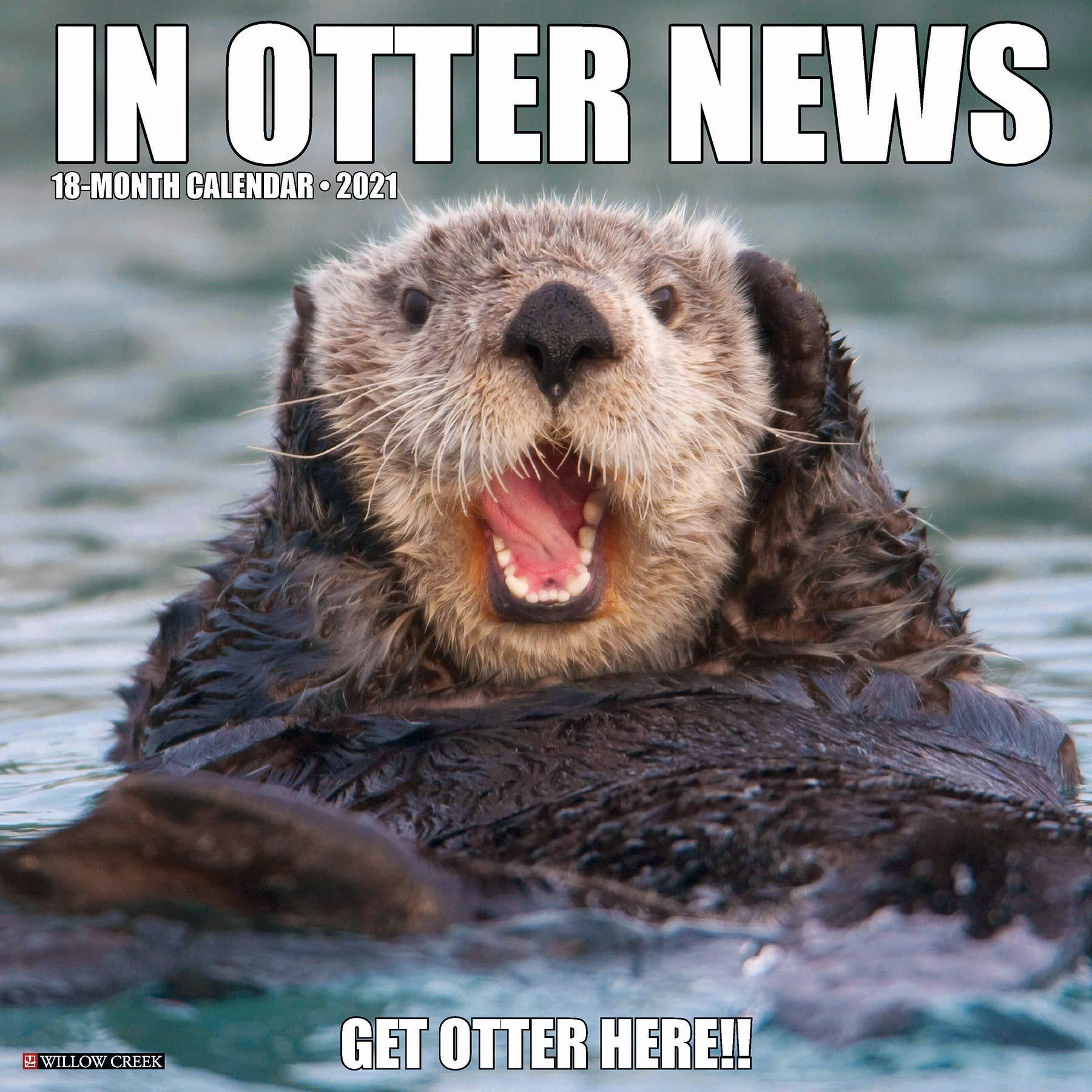 Otter Calendar 2021 Images