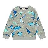 Bluezoo Kids Boys' Grey Dinosaur Print Sweat