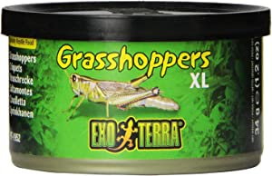 Exo Terra Specialty Reptile Food, Canned XL Grasshoppers for Reptiles, PT1952