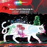 Catnip Dynamite