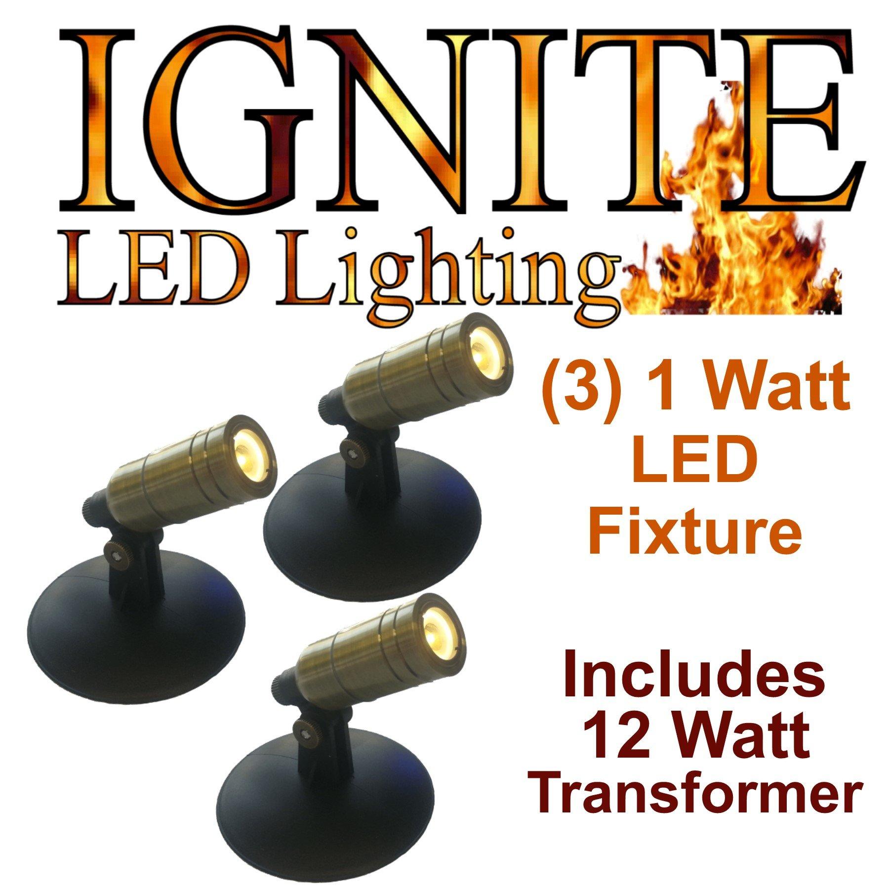 Anjon Ignite LED Pond and Landscape lighting AB1KLED 1 Watt, 3 Light LED Light Kit with 12 Watt Transformer