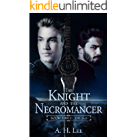 The Knight and the Necromancer: Book Three: The Sea book cover