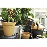 Elho Green Basics - Vaso di Coltura, Marrone (Mild Terra), 13 x 13 x 12 cm