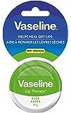 Vaseline Lip Therapy Aloe 17g