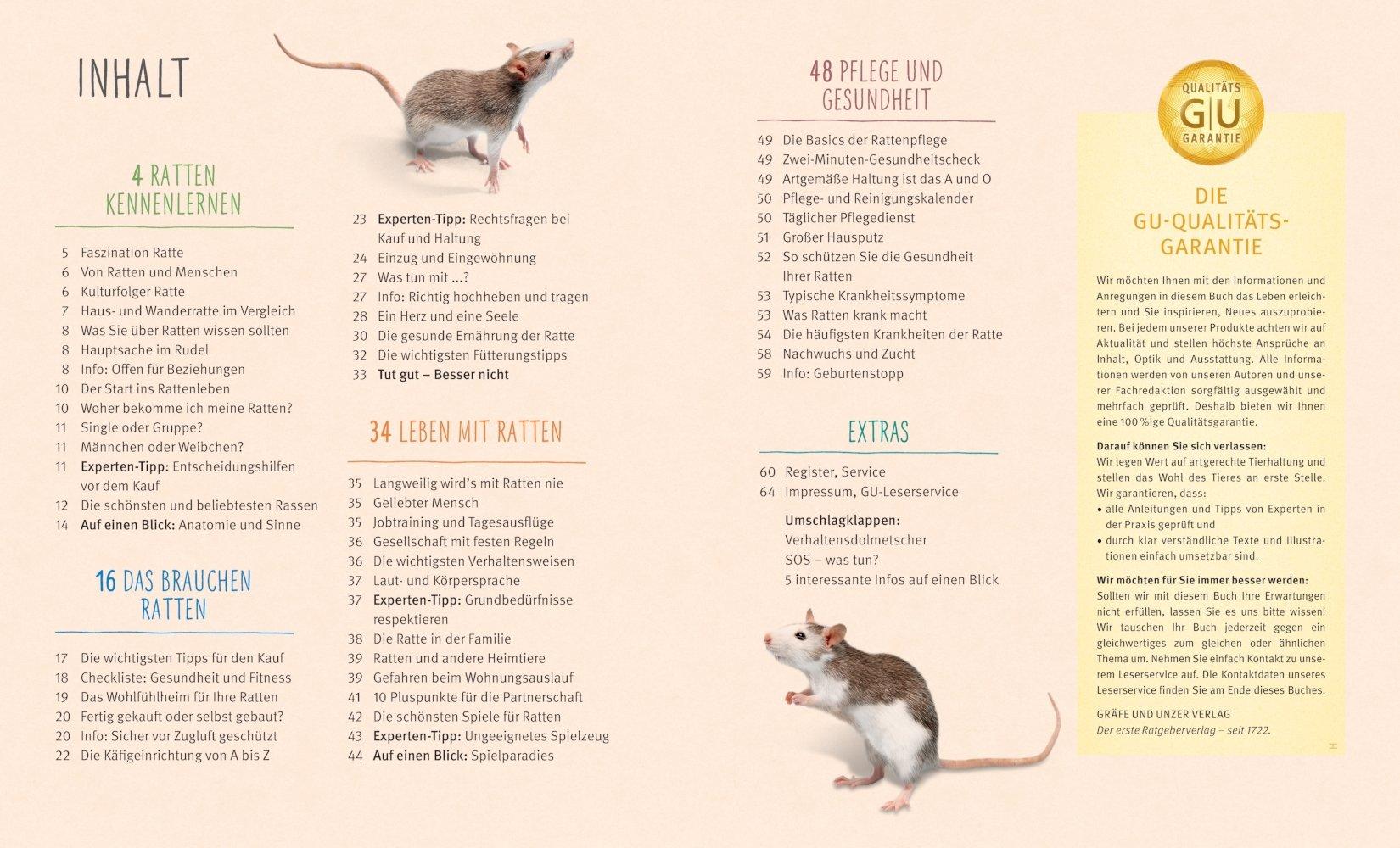 Ratten: So fühlen sich die Kletterkünstler rundum wohl GU ...
