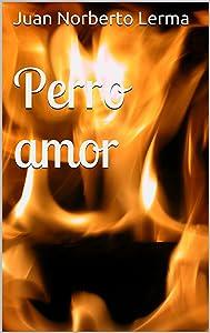 Perro amor (Spanish Edition)