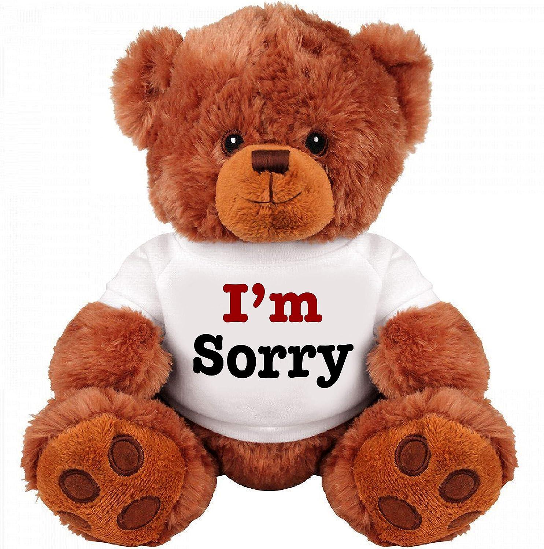 I Am Sorry Teddy Bear Cute and Cuddly Romantic Medium Teddy Bear Stuffed Animal Funny Teddy Bear Couple Gift