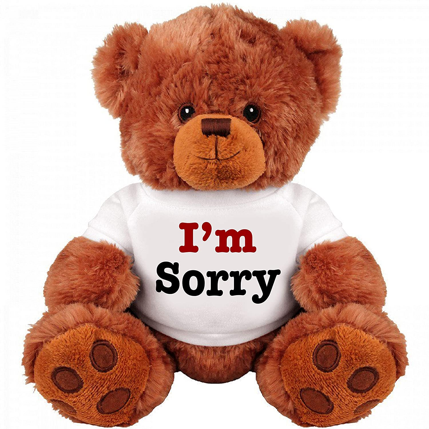 I Am Sorry Teddy Bear - Cute and Cuddly : Funny Teddy Bear Couple Gift : Romantic Medium Teddy Bear Stuffed Animal SinMan
