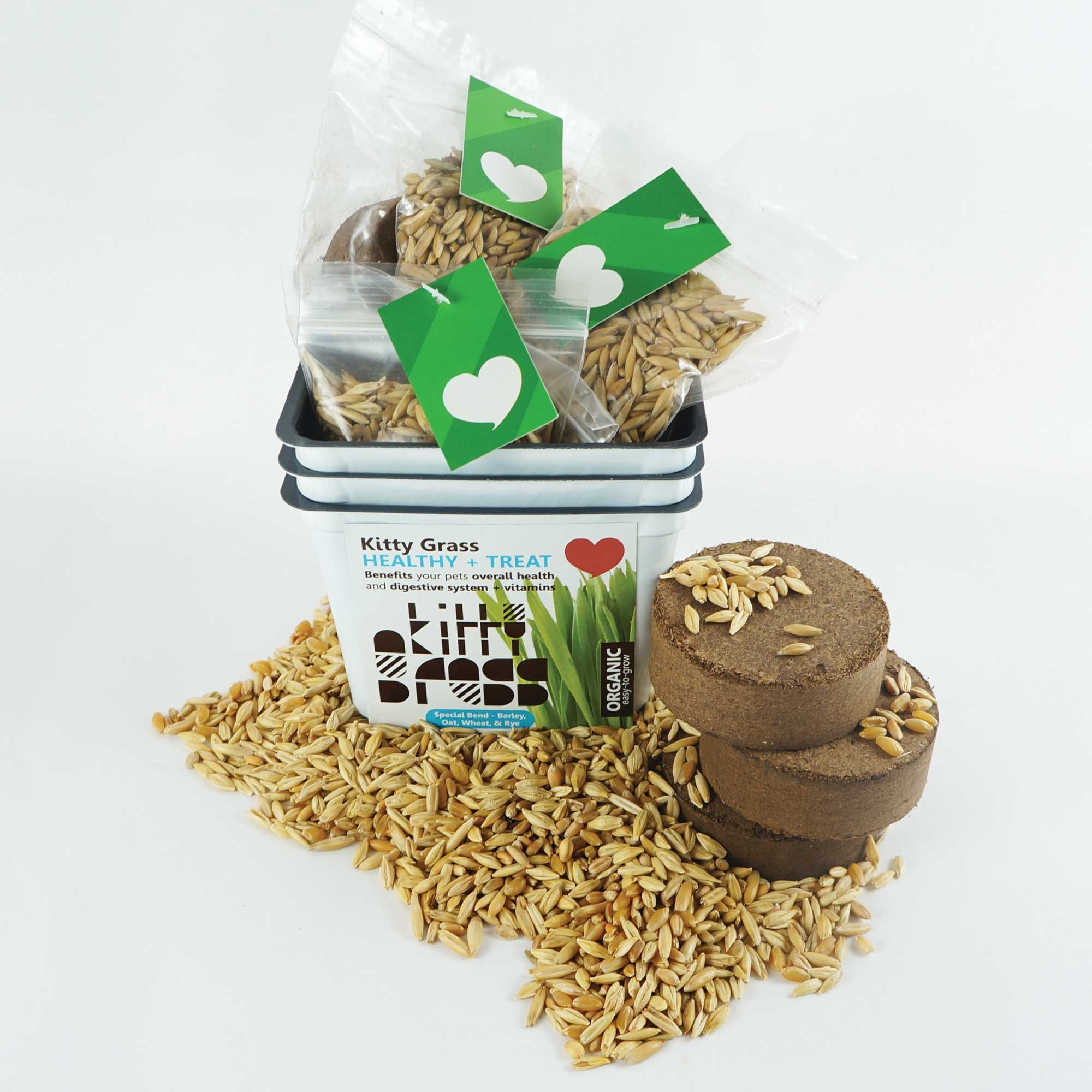 Priscillas Kitty Cat Pet Grass Seed Refill Pack and 100% Organic Soil Pods (Barley, Oats, Wheat and Rye) Over 3 Oz.