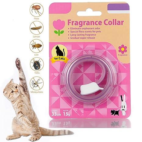 Flea Tick Collar para gatos con Essenza Natural Botánico para el ...
