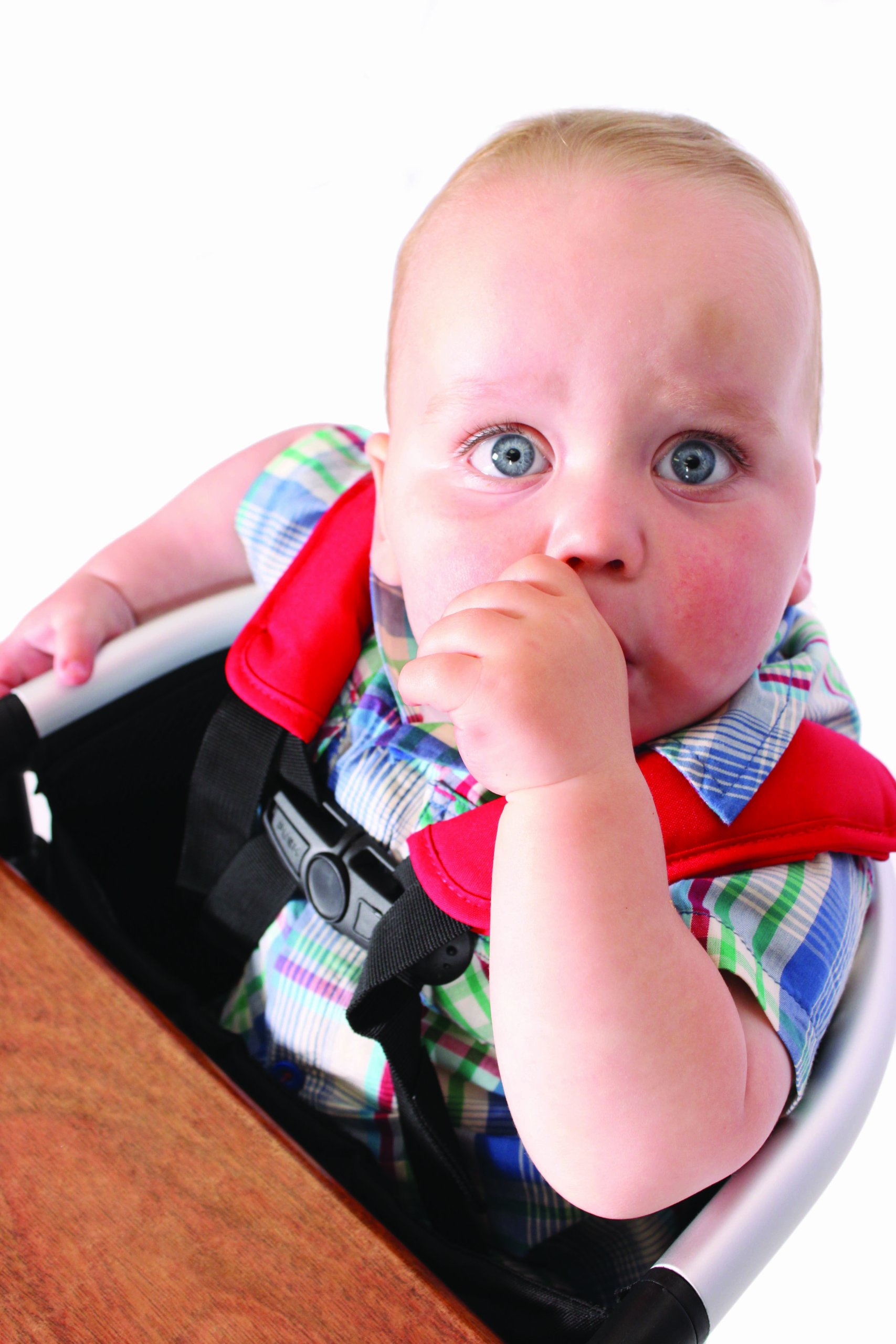 phil&teds Lobster Clip-On Highchair, Black - Award Winning Portable High Chair - Includes Carry Bag and Dishwasher Safe Tray - Hygienic and Easy Clean - Safe and Secure - Ideal For Home and Travel by phil&teds (Image #7)