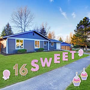 Opopark 11PCS Sweet 16 Birthday Yard Signs with Stakes Yard Sign and Outdoor Lawn Decorations - Happy Birthday Party Yard Signs