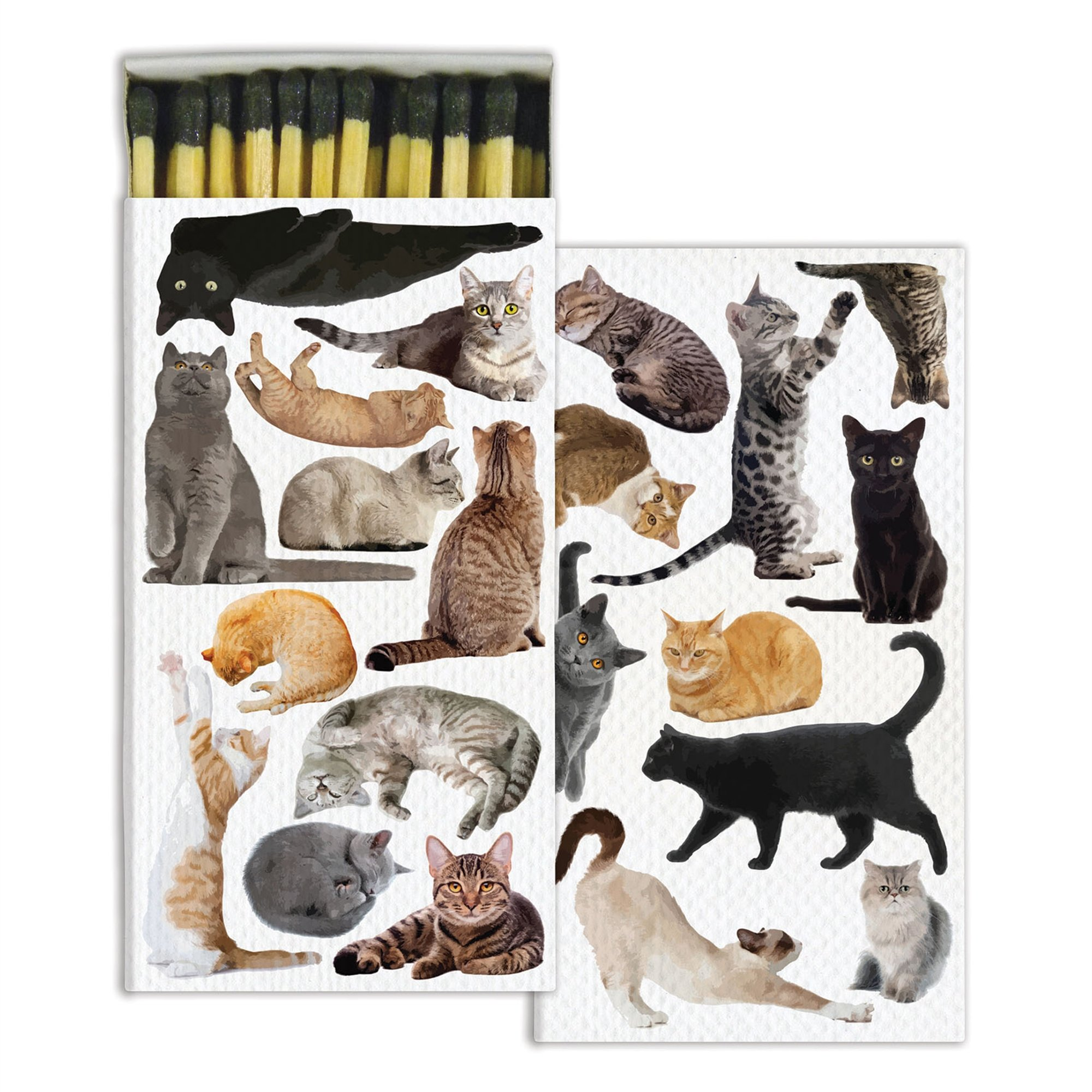 HomArt Cat Pack Match Boxes Wooden Matches (Set of 6)