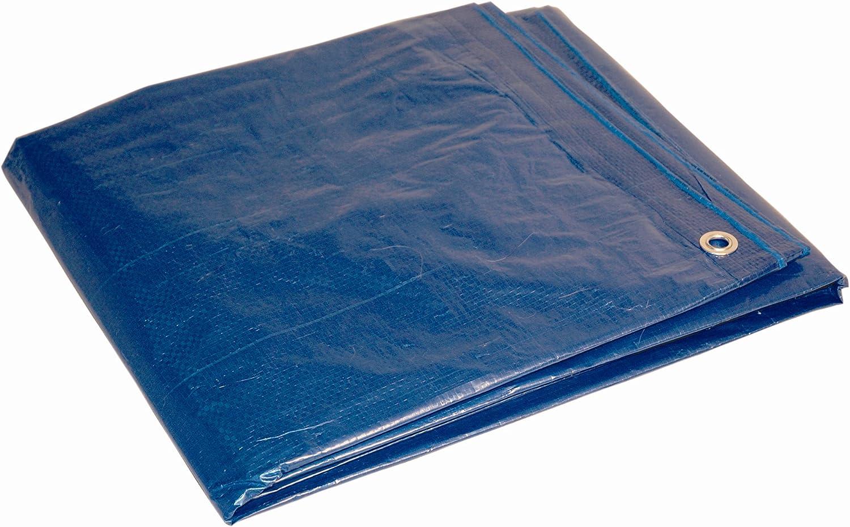 Amazon.com: Dry Top 1012 Medium Duty Tarp, 10x12 Feet, Blue: Home  Improvement
