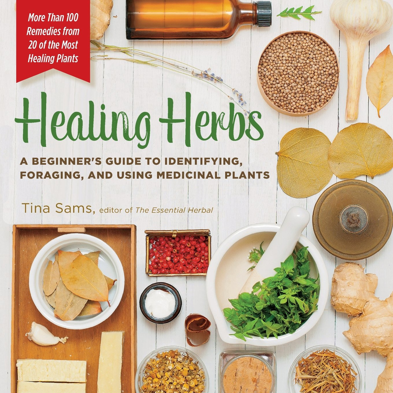 Healing Herbs: A Beginner's Guide to Identifying, Foraging, and Using  Medicinal Plants / More than 100 Remedies from 20 of the Most Healing  Plants: Tina ...