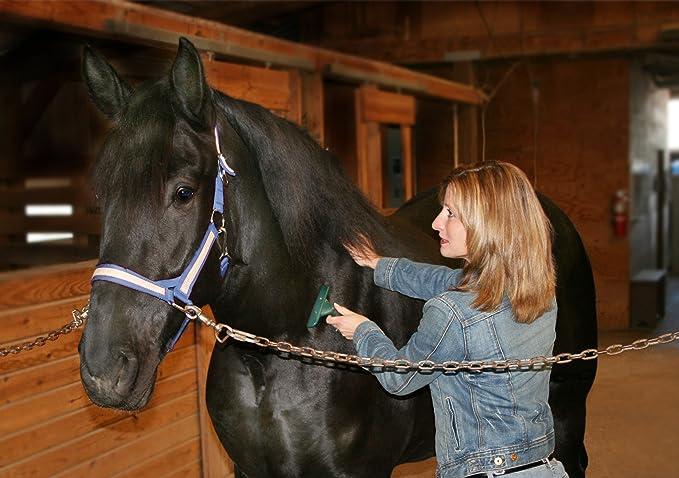 Furminator Enthaarungsb/ürste f/ür Pferde ideal zur Entfernung des Winterpelzes