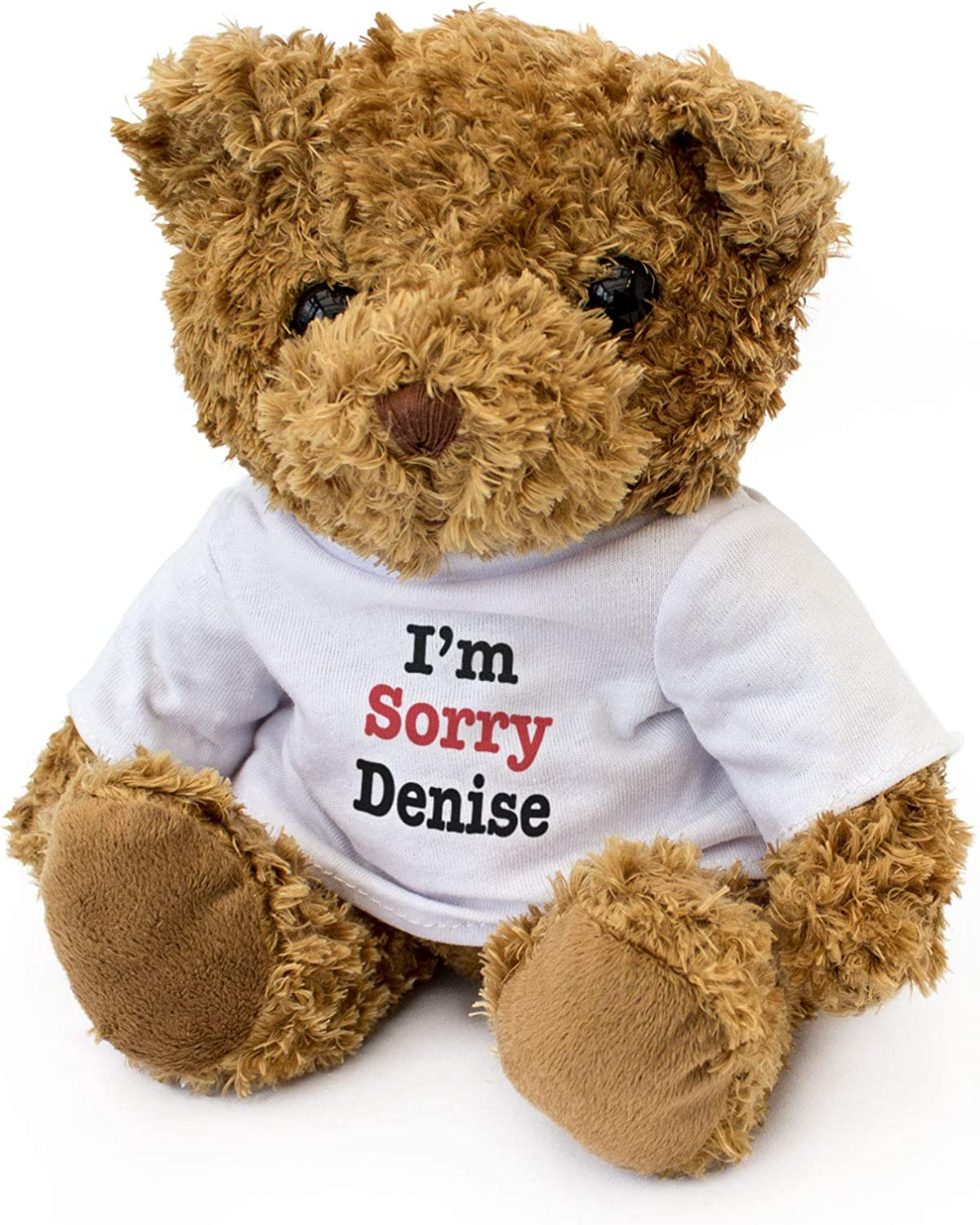 Gift Present Apology I/'M SORRY BECKY NEW Teddy Bear Cute Soft Cuddly