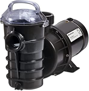 Pentair DYNII-NI- 3/4 HP Dynamo Single Speed Aboveground Pool Pump with Cord, 3/4 HP