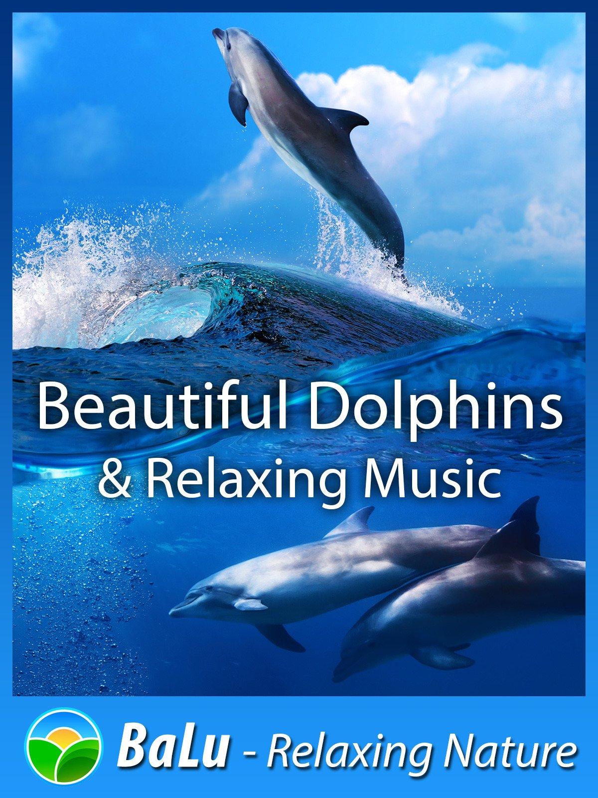 Amazon com: Beautiful Dolphins & Relaxing Music - BaLu