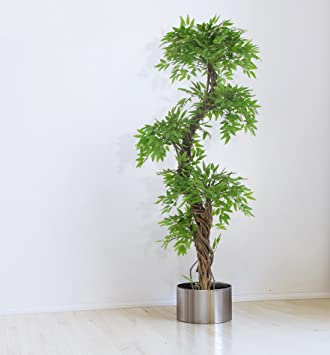Amazon.com: Large Contemporary Artificial Plants and Trees, Luxury ...