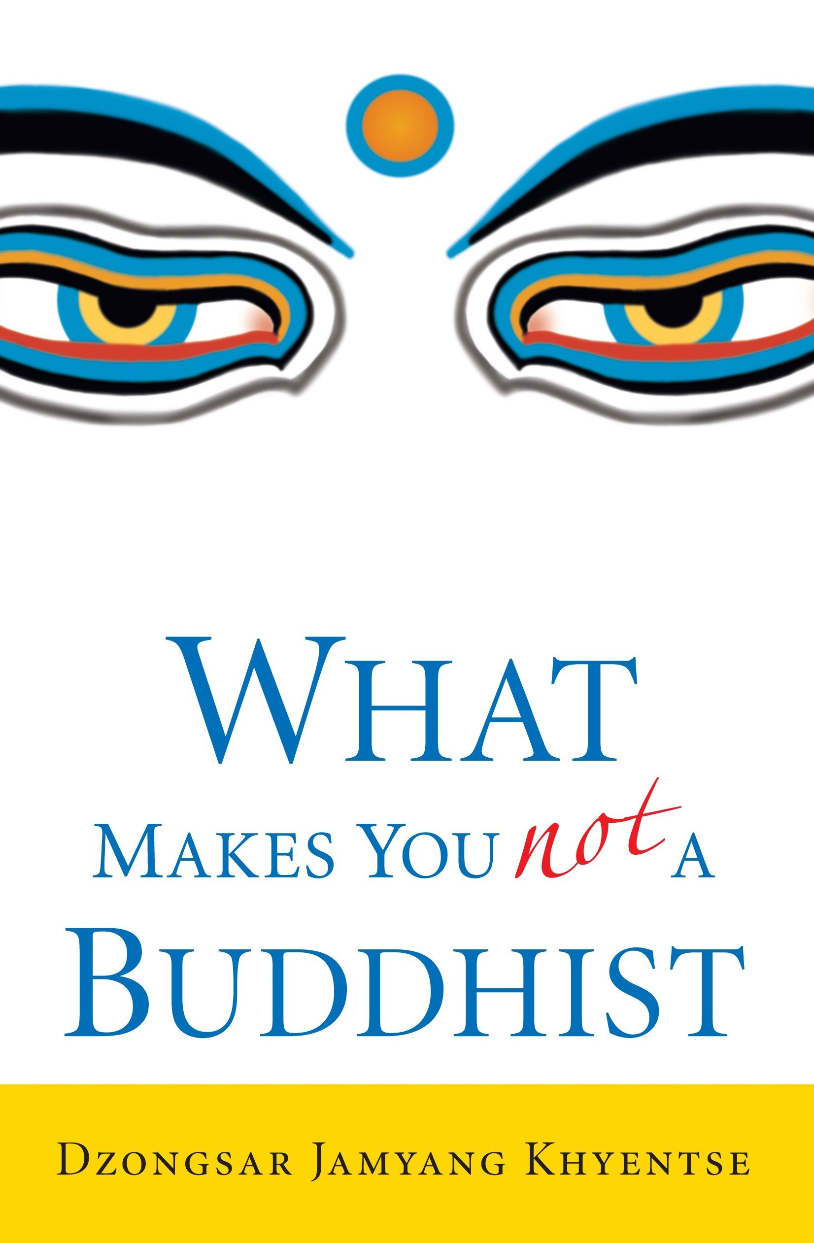 Read Online What Makes You Not a Buddhist pdf epub
