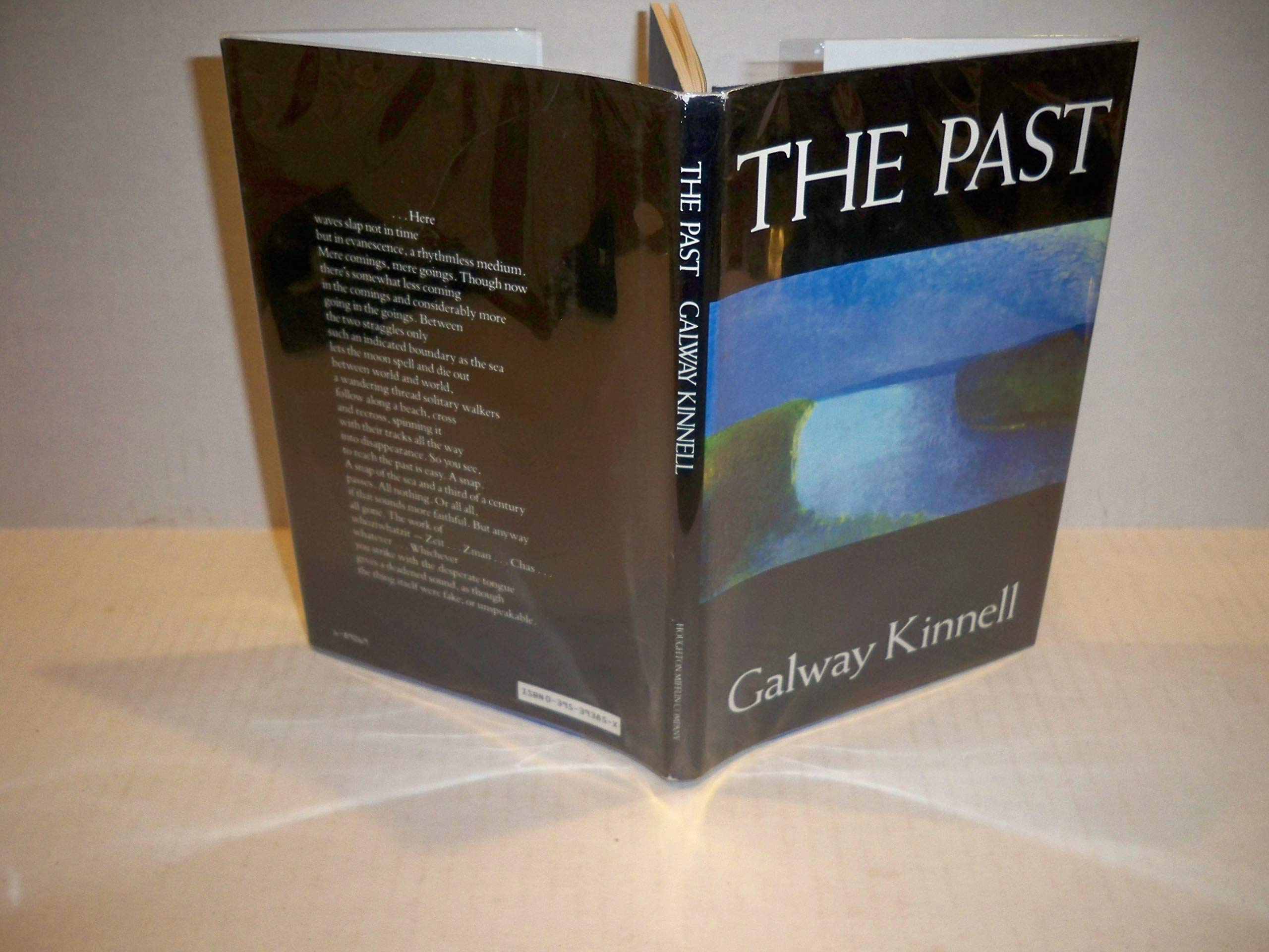 The Past Galway Kinnell 9780395393857 Amazoncom Books