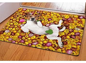Amazon.de: FTHIYK Badezimmer Antirutschmatten Niedlich Hund Fußmatte ...