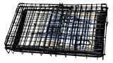 """Cool Runners Tall Boy Small Wire Pet Crate 22"""" x"""