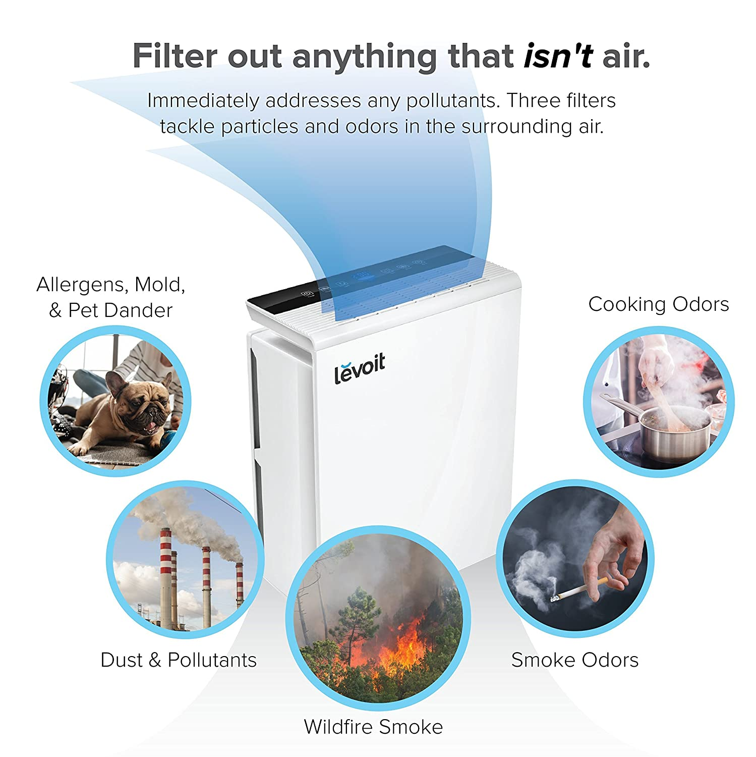 Best air filter for allergies and pet dander - Amazon Com Levoit Air Purifier With True Hepa Filter Odor Allergen Allergies Eliminator Cleaner Home Air Filtration For Dust Mold Pets Smokers