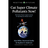 Cut Super Climate Pollutants Now!: The Ozone Treaty's Urgent Lessons for Speeding Up Climate Action (Resetting Our…
