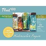 Speedball Art Products Fluid 100 Artist Watercolor Paper 140 lb Hot Press, 9 x 12 BLOCK, 100% Cotton Natural White